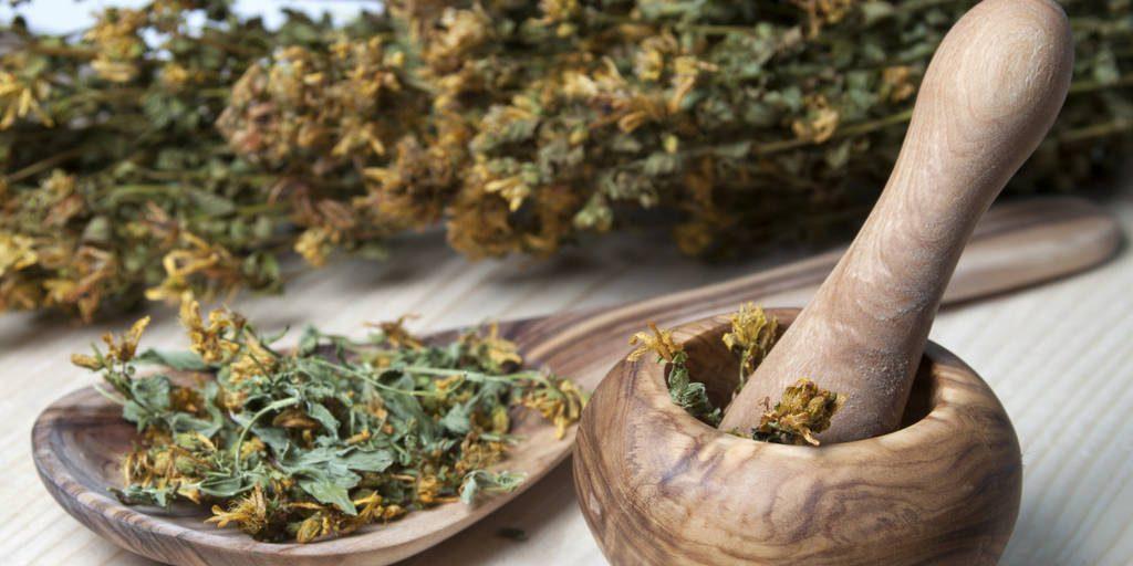 Ervas medicinais, medicina natural, homeopatia